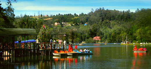 Welcome to Kodaikanal King Tours & Travels