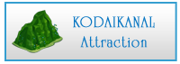 kodaikanal attraction